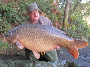 Perfect common1